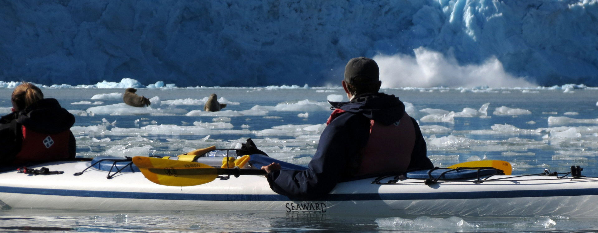 Alaska Sea Kayaking Picture